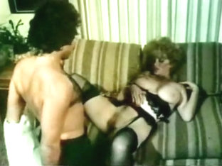 Xxx Bra Busters In The 70s: Vol.2