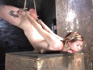 Hogtied Ella Nova Fingered And Fisted Until She Squirts